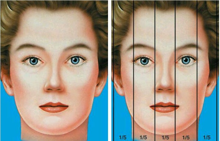 Image result for شیوه های تقسیم بندی صورت قبل ازعمل بینی