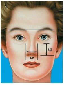 آنالیز چهره