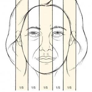 تناسب چهره