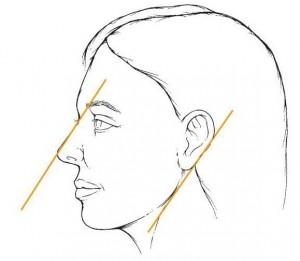 مقیاس بینی با سایر اجزا صورت